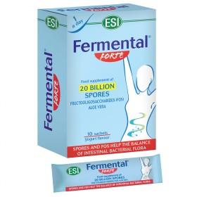 FERMENTAL bus ING