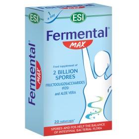 FERMENTAL cps ING