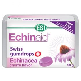 Gummy Echinaid