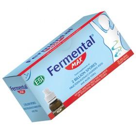 FERMENTAL drink ING