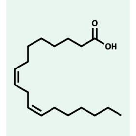 struttura omega 6