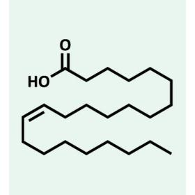struttura omega 9