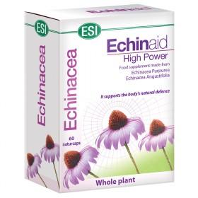 ECHINAID 60cps INGL