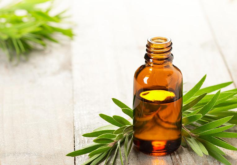 7 modi per utilizzare il Tea Tree Oil